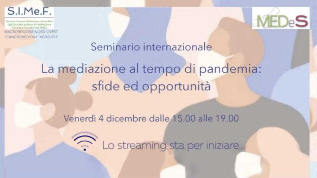 video medes seminario 4 dicembre 2020